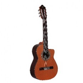 ps201requinto